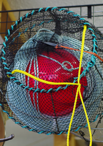 Crab traps, prawn trap, bait